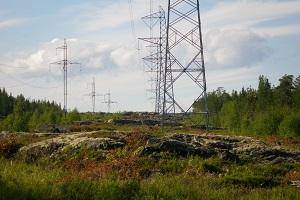 ФСК ЕЭС проведет комплексное обследование линии электропередачи 220 кВ в Ленинградской области
