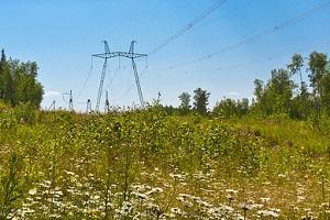 ФСК ЕЭС внедрила во всех филиалах компании систему экологического менеджмента по стандарту ISO 14001:2004