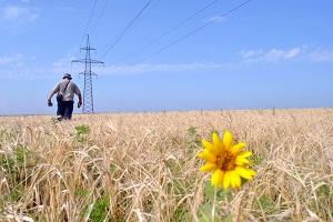 ФСК ЕЭС обеспечит дополнительными мегаваттами развитие сельского хозяйства на Юге России