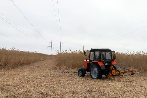 ФСК ЕЭС расчистит в Поволжье свыше 2,4 тысяч гектаров трасс линий электропередачи от кустарниковой растительности