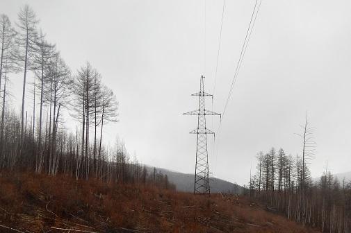 ФСК ЕЭС установит новые металлические опоры на связывающей энергосистемы Дальнего Востока и Сибири линии электропередачи