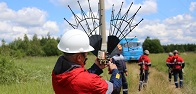 Rosseti FGC UES to install avian protection devices on seven backbone transmission lines in Yaroslavl region